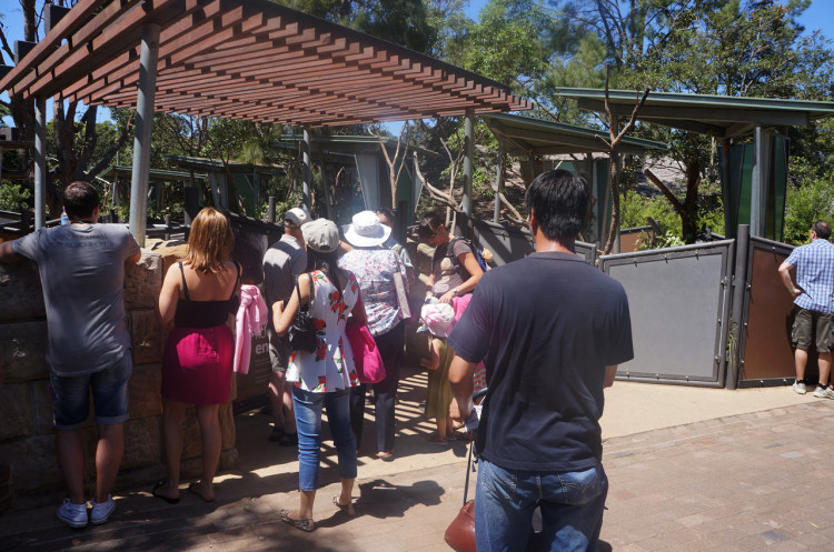 Zoológico de Sydney
