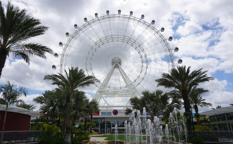Orlando-Orlando-Eye-27