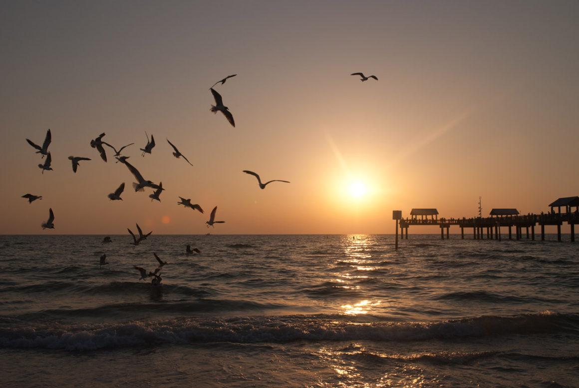 Clearwater: a praia mais linda da Flórida