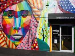 Wynwood em Miami: o charmoso Wynwood Art District