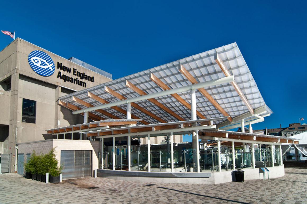 New England Aquarium: o aquário de Boston