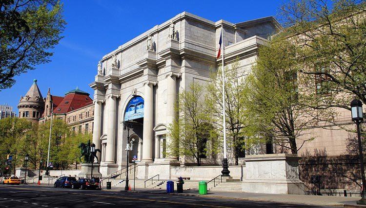 Museus em Nova York: American Museum of Natural History